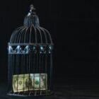 CRA Penalties and Interest: An Update
